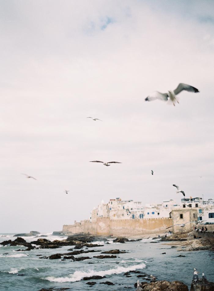 Seagulls-on-the-Coast-of-Morocco-700x951